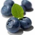 BlueBerry (Mora Azúl)